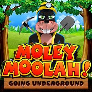 Ygg moley moolah