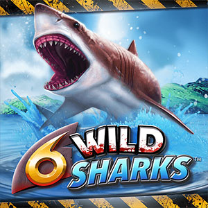 4theplayer 6 wild sharks