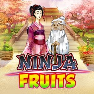 Playngo ninja fruits