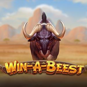 Playngo win a beest